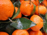 Свежие овощи и фрукты по очень низким ценам