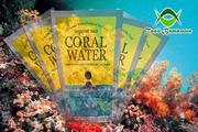 Коралловый кальций – жить,  как и сколько? Ответ даёт «Твой витамин»